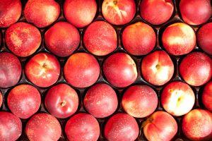 Organic-nectarines