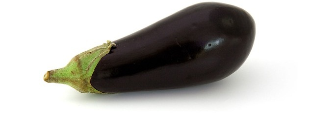 Growing Healthy Organic Eggplants