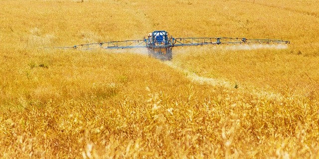 Landmark UN Report - pesticides and hormone disruption