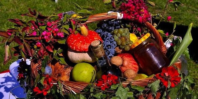 Organic Food Boxes
